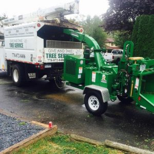 give-and-take-tree-service-commercial-services-feature